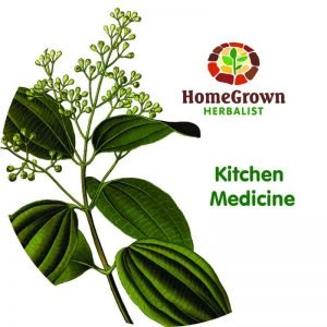 kitchen medicine homegrown herbalist movie